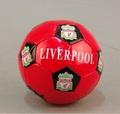 Мяч Ливерпуль