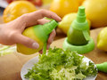 Цитрус - спрей для распыления сока цитрусовых комплект.